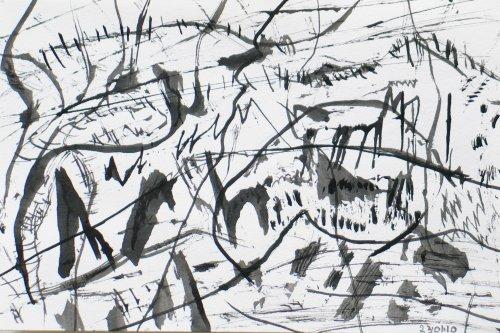 dessin20100123-4